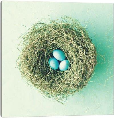 Three Little Eggs Canvas Art Print