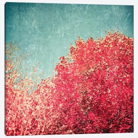 Vermont Autumn Canvas Print #CMN196} by Caroline Mint Canvas Artwork