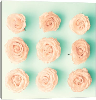 9 Roses Canvas Art Print