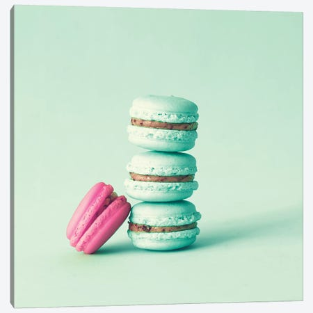 Delicious Macaroons 3-Piece Canvas #CMN39} by Caroline Mint Canvas Print