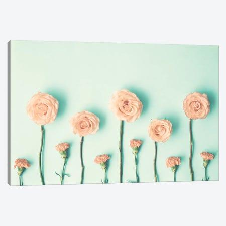 Growing Flowers Canvas Print #CMN62} by Caroline Mint Canvas Artwork