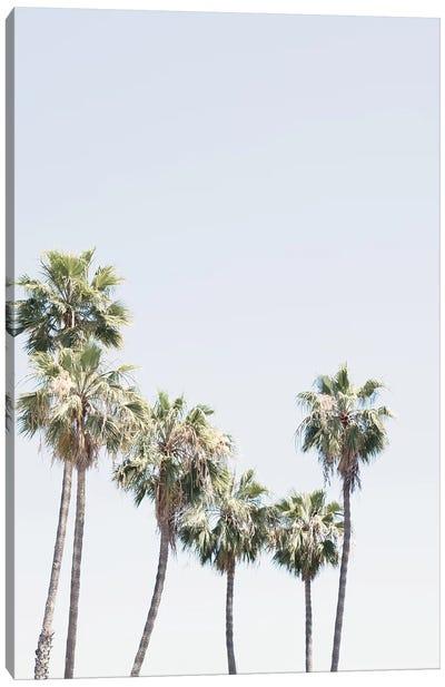 La Palms Canvas Art Print