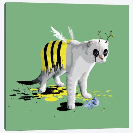 The Cat Who Wanted To Be A Bee 3-Piece Canvas #CMO14} by Carl Moore Canvas Print