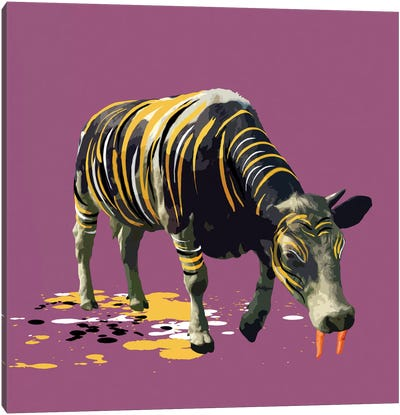 The Cow Who Wanted To Be A Tiger Canvas Print #CMO15