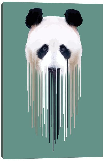 Dripsters Series: Panda Face Canvas Print #CMO23