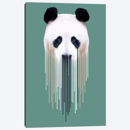 Panda Face Canvas Print #CMO23} by Carl Moore Art Print