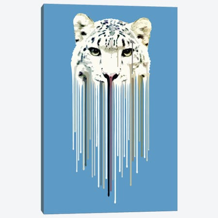 Snow Leopard Canvas Print #CMO25} by Carl Moore Canvas Artwork