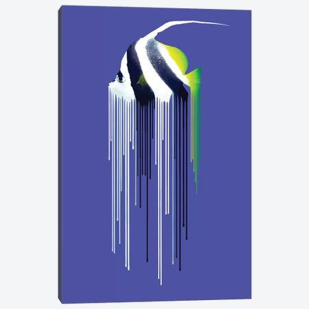 Bannerfish Canvas Print #CMO26} by Carl Moore Canvas Art