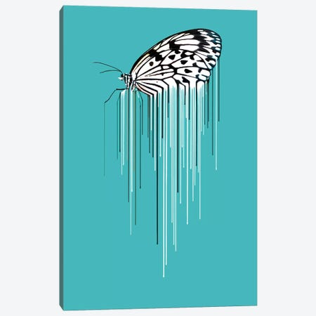 Butterfly Canvas Print #CMO28} by Carl Moore Canvas Art Print