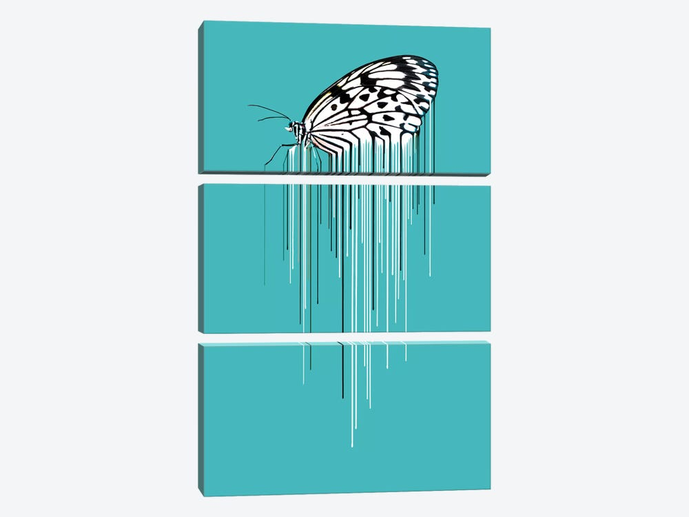 Butterfly by Carl Moore 3-piece Canvas Art