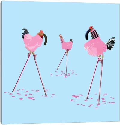 The Chickens Who Wanted To Be Flamingos Canvas Art Print