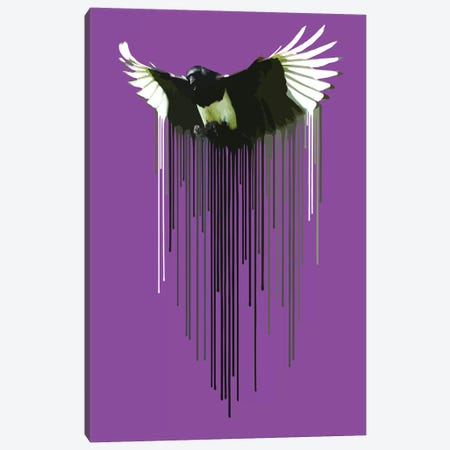 Magpie Canvas Print #CMO31} by Carl Moore Canvas Artwork