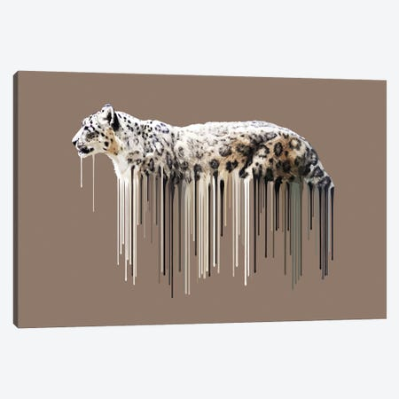 Snow Leopard Dripster Canvas Print #CMO36} by Carl Moore Canvas Print