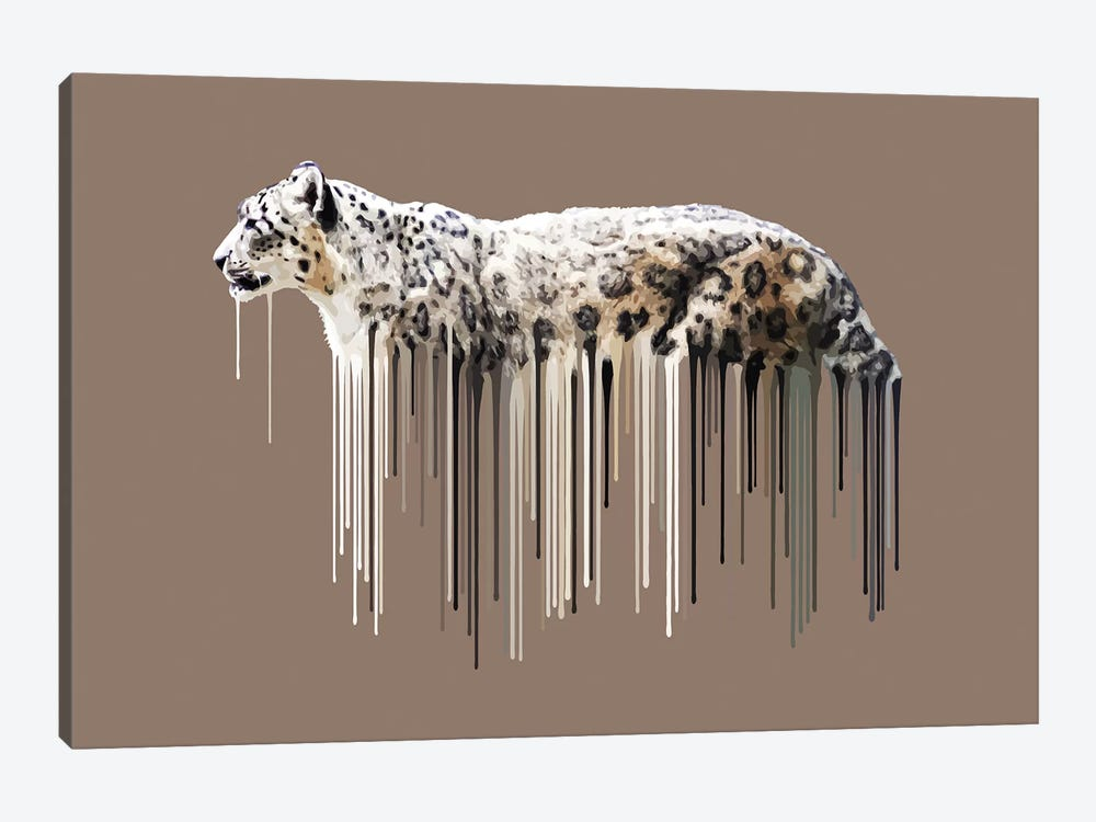 Snow Leopard by Carl Moore 1-piece Canvas Art Print