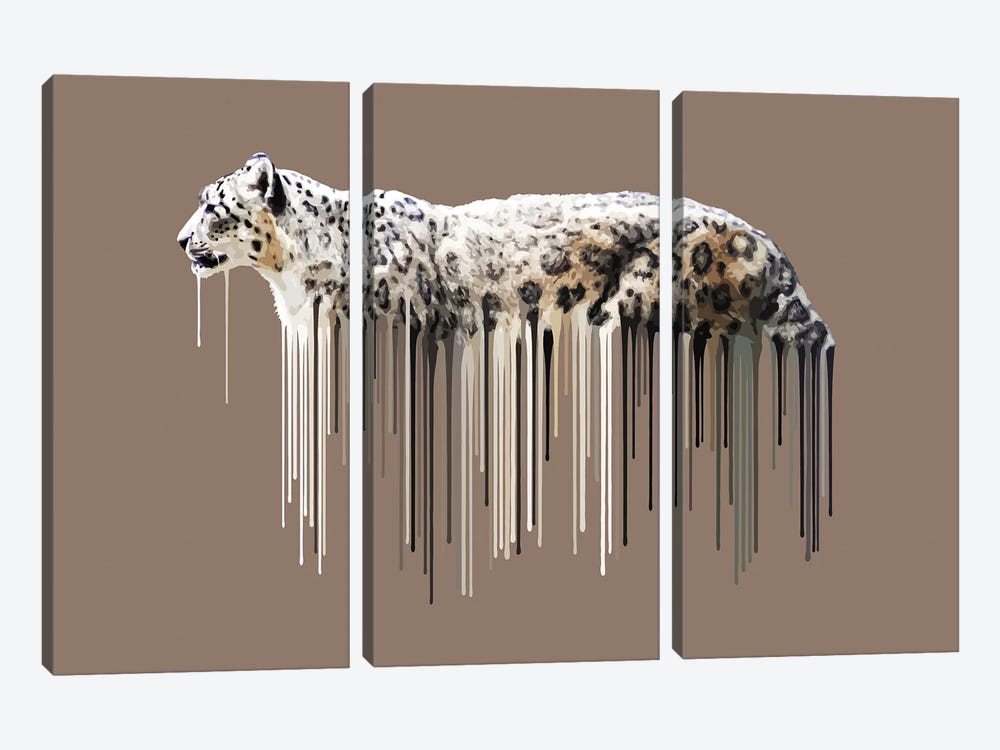 Snow Leopard by Carl Moore 3-piece Art Print
