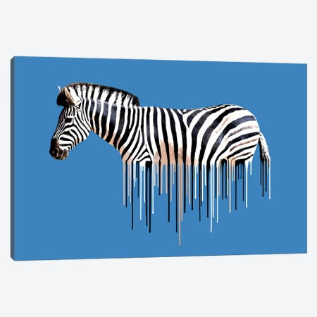 Zebra Dripster Canvas Print #CMO38} by Carl Moore Canvas Artwork
