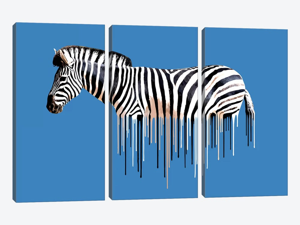 Zebra by Carl Moore 3-piece Canvas Art Print