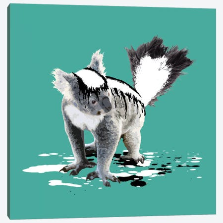 The Koala Who Wanted To Be A Skunk Canvas Print #CMO6} by Carl Moore Canvas Art