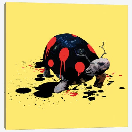 The Tortoise Who Wanted To Be A Ladybug Canvas Print #CMO9} by Carl Moore Canvas Art Print