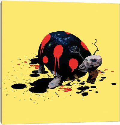 The Tortoise Who Wanted To Be A Ladybug Canvas Art Print