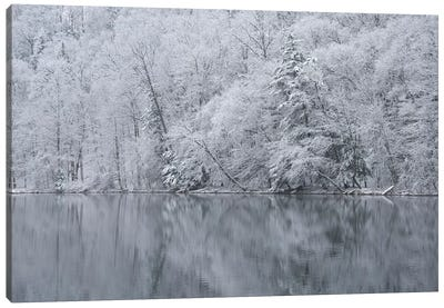 USA, New York State. Snow covered trees and reflection, Green Lakes State Park Canvas Art Print