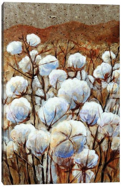 Cotton Fields Canvas Art Print