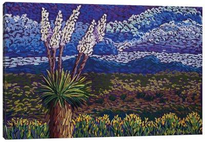 Desert Yuccas Canvas Art Print
