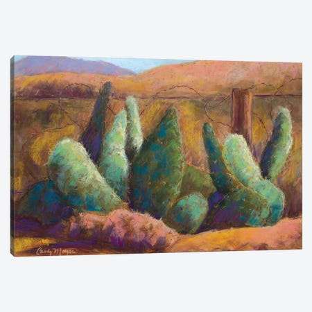 Border Cactus Canvas Print #CMY3} by Candy Mayer Canvas Wall Art