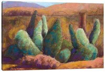 Border Cactus Canvas Art Print