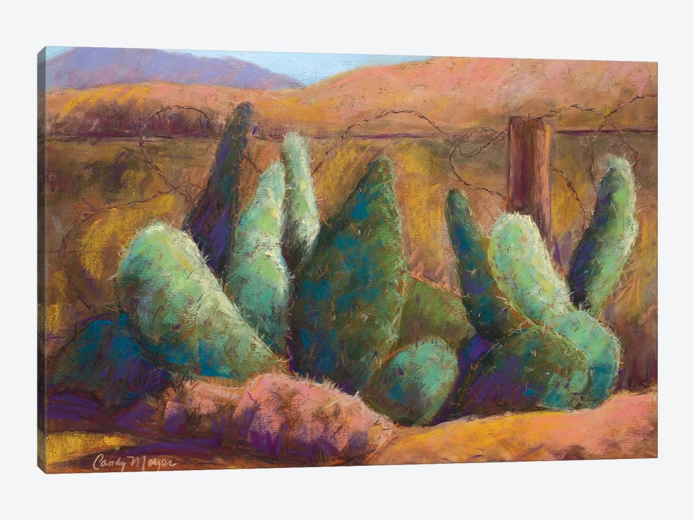 Border Cactus by Candy Mayer 1-piece Canvas Artwork