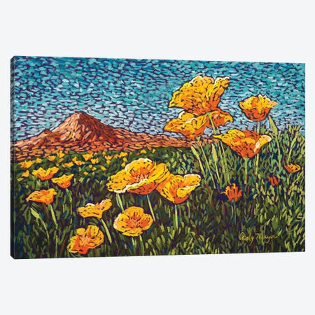 Poppies Canvas Print #CMY46} by Candy Mayer Canvas Art