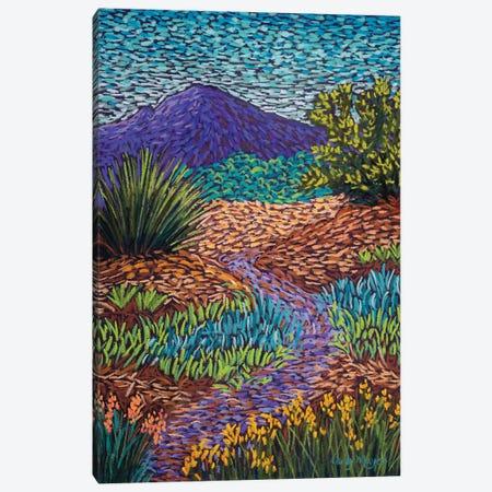 Purple Mountain Path Canvas Print #CMY47} by Candy Mayer Canvas Art