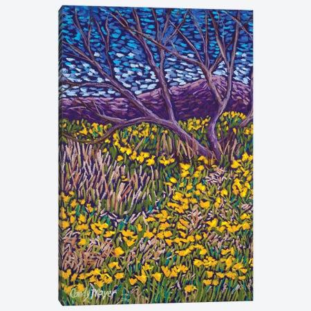 Poppy Spring 3-Piece Canvas #CMY79} by Candy Mayer Canvas Artwork