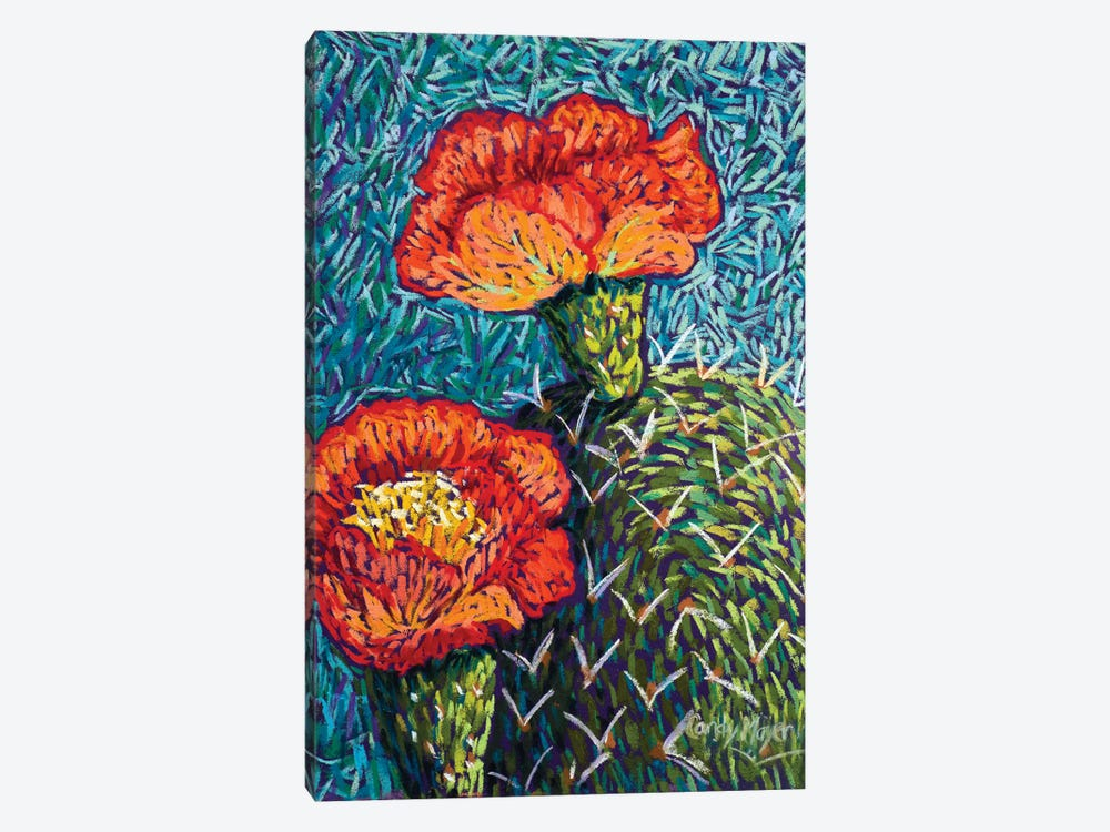 Prickly Pear In Orange by Candy Mayer 1-piece Canvas Print