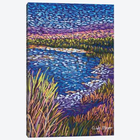 Southwest Wetlands Canvas Print #CMY82} by Candy Mayer Art Print