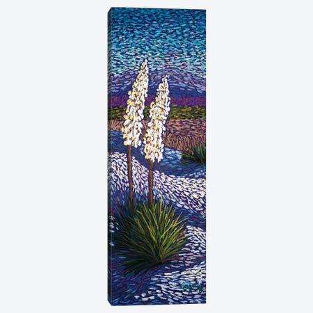 Yuccas At White Sands Canvas Print #CMY84} by Candy Mayer Canvas Artwork