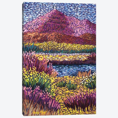 Fall Cristo Rey Canvas Print #CMY86} by Candy Mayer Canvas Artwork