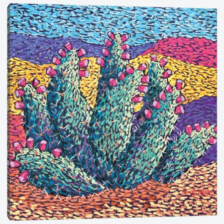 Bright cactus in Pastel Canvas Print #CMY87} by Candy Mayer Canvas Art