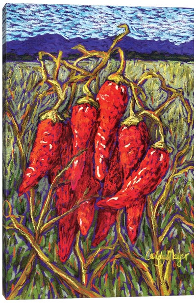 Chiles in Pastel Canvas Art Print
