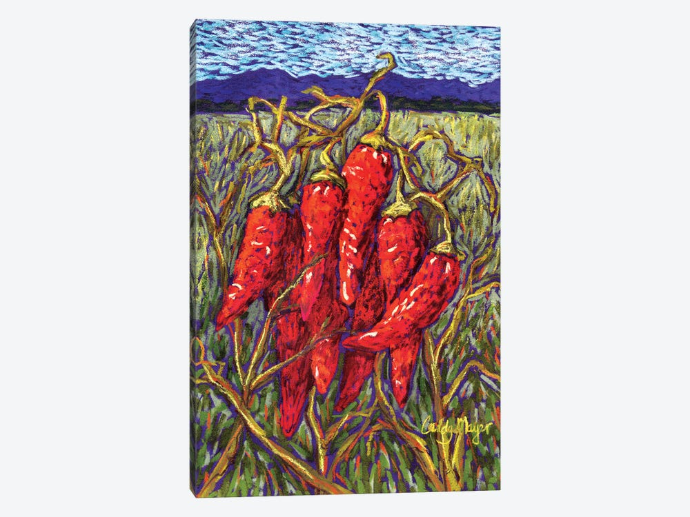 Chiles in Pastel by Candy Mayer 1-piece Canvas Artwork