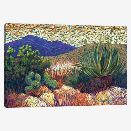 Desert Cactus Canvas Print #CMY90} by Candy Mayer Canvas Art