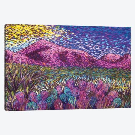 Pink Mountains Canvas Print #CMY93} by Candy Mayer Canvas Artwork