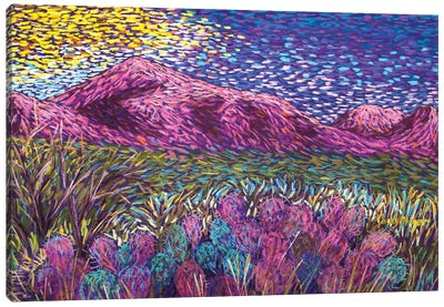 Pink Mountains Canvas Art Print