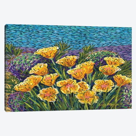 Poppies and Prickly Pear Canvas Print #CMY94} by Candy Mayer Art Print