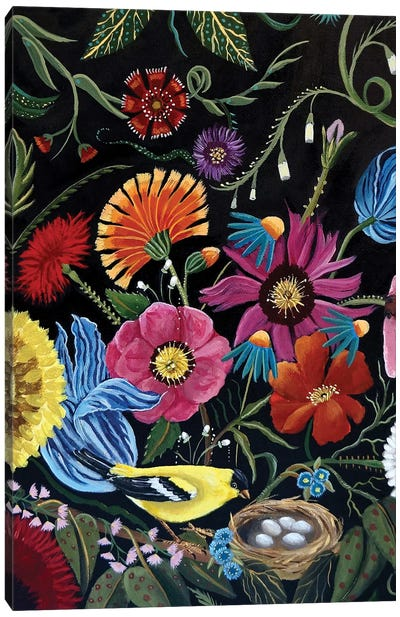 Finch Canvas Art Print