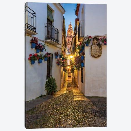Between Flowerpots (Córdoba, Spain) Canvas Print #CNS26} by Chano Sánchez Canvas Art