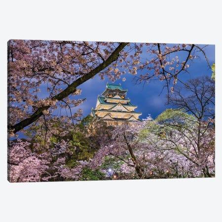 Cherry Blossom Explosion (Osaka, Japan) Canvas Print #CNS29} by Chano Sánchez Canvas Print