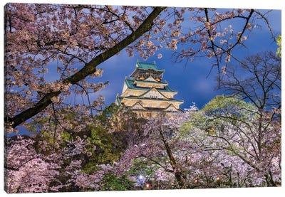 Cherry Blossom Explosion (Osaka, Japan) Canvas Art Print