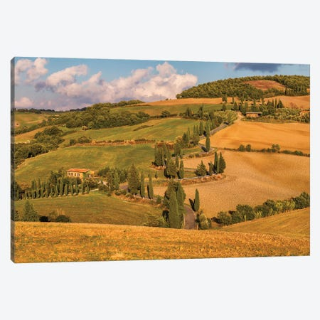 Road To My Destiny (Tuscany, Italy) Canvas Print #CNS72} by Chano Sánchez Canvas Art