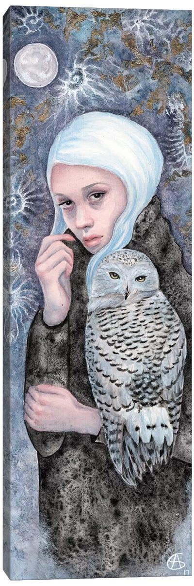 Nightowl Canvas Art Print
